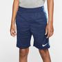 Bermuda Nike Trophy Aop